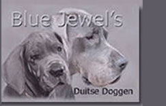 BlueJewels